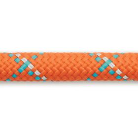 Ruffwear Knot-a-Leash Koiran talutushihna, pumpkin orange